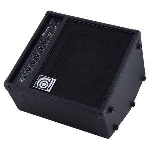 Combo Chitara Bas Ampeg BA-108 V2