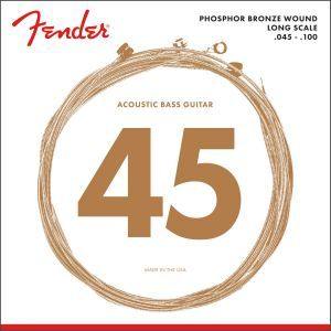 Fender 8060 Acoustic Bass