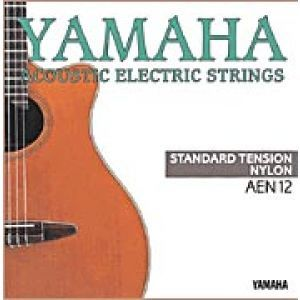 Corzi Chitara Electroacustica Yamaha Aen12