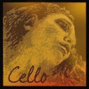 Corzi violoncel Pirastro Evah Pirazzi Gold