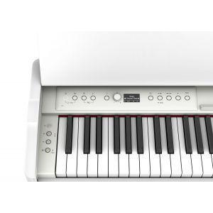 Roland F-701 White SET