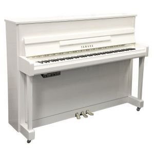 Yamaha B2 SC2 Polished White