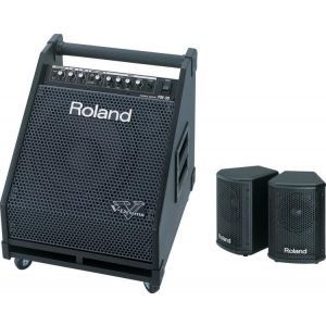Roland PM 30 Drum Monitor