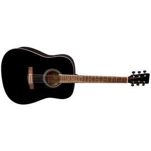 Chitara Acustica VGS D 10 negru