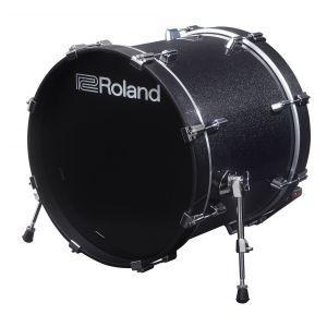 Roland KD-200 MS