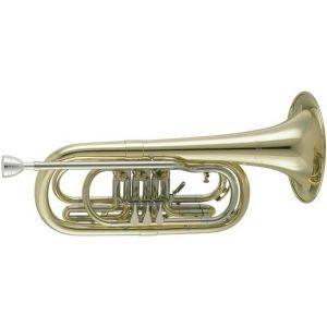 Trompeta V.F.Cerveny CTR 590px BB